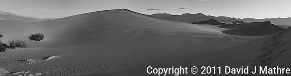 Early Morning Sand Dune Panorama. Composite of 4 images taken with a Nikon D3x and 45 mm f/2.8 PC-E lens (ISO 100, 45 mm, f/16, 1/60 sec). Images processed with Capture One Pro, Focus Magic, PTGui Pro, NIK Silver Efex Pro 2, and converted for web with Photoshop CS5. (David J Mathre)