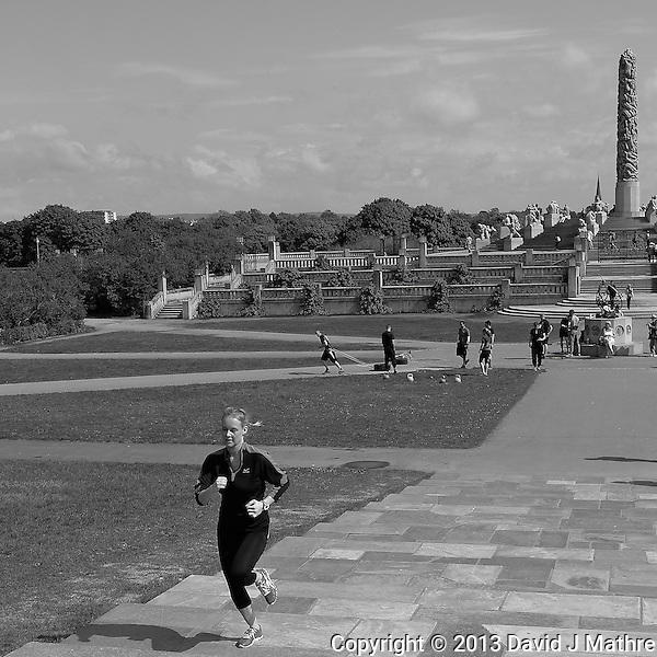 Running the Steps at Vigeland Sculpture Park in Oslo, Norway. Semester at Sea, Spring 2013 Enrichment Voyage Day 32. Image taken with a Leica X2 camera (ISO 200, 24 mm, f/16, 1/1000 sec) (David J Mathre)