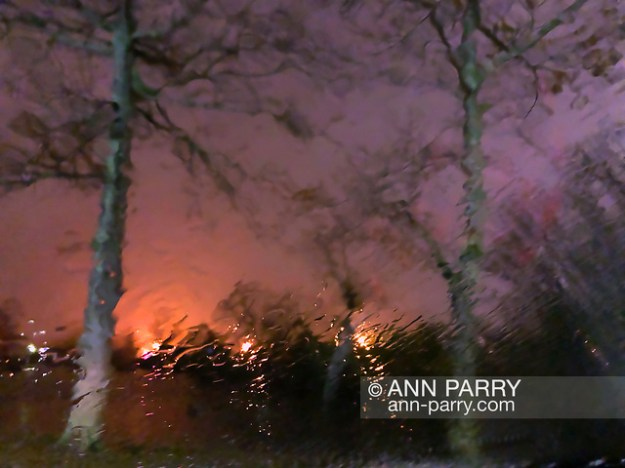Merrick, NY, USA. Dec. 31, 2018. A raft of ducks sleeps hidden at Cammanns Pond during rainy New Year's Eve. (© 2018 Ann Parry/Ann-Parry.com)