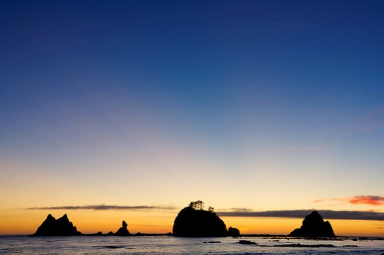 Giants Graveyard sea stack on Washington Coast at sunset, near Strawberry Point, South Coast Trail, Olympic National Park, Washington, USA (Brad Mitchell Photography)