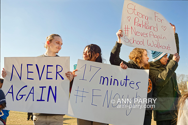 North Bellmore; New York; USA. March 14; 2018. Protesting gun violence, Mepham H. S.  students walk out of class, as part of a nationwide walkout in solidarity with shooting victims, and a demand for U.S. laws to reduce gun violence. (© 2018 Ann Parry/Ann-Parry.com)
