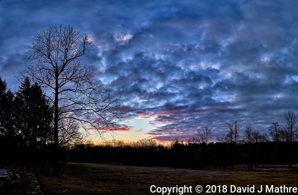 Dawn Morning Clouds. Winter Backyard Nature in New Jersey. Composite of 4 images taken with a Fuji X-T1 camera and 16 mm f/1.4 lens (ISO 200, 16 mm, f/5.6, 1/125 sec). (David J Mathre)