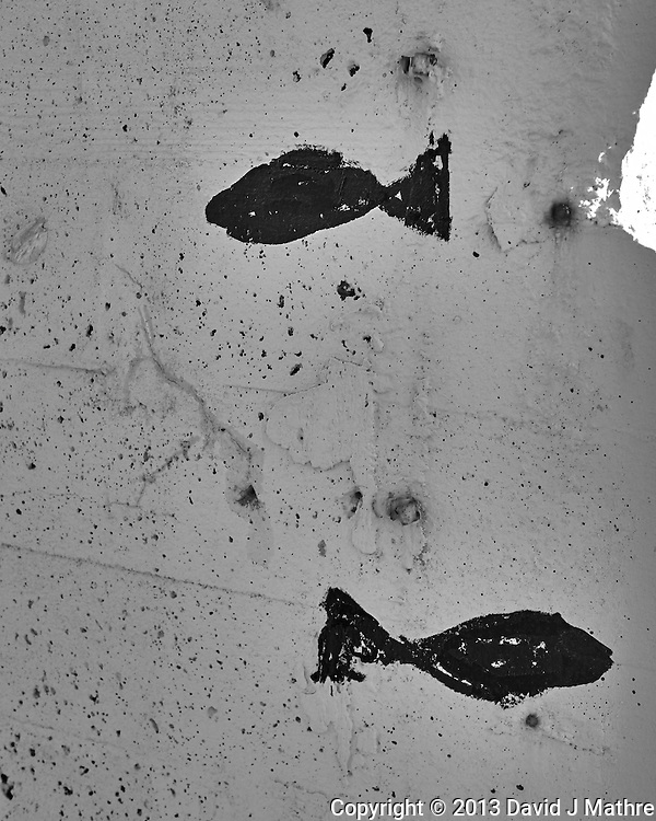 Fish graffitti in Tromsø, Norway. Image taken with a Leica X2 camera (ISO 100, 24 mm, f/5.6, 1/100 sec). Raw image processed with Capture One Pro (including conversion to B&W). (David J Mathre)