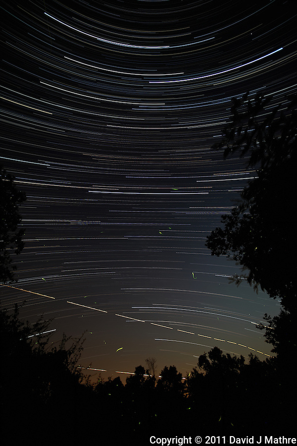 Star, Jet, and Firefly Trails. Summer Night in New Jersey. Image taken with a Nikon D3x and 14 mm f/2.8D lens (ISO 200, 14 mm, f/4, 8 sec). Composite of 980 images combined using the Startrails program. (David J Mathre)