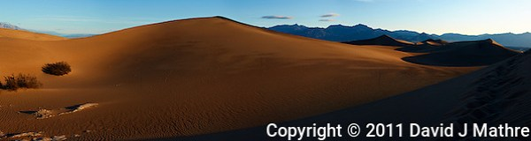 Early Morning Sand Dune Panorama. Composite of 4 images taken with a Nikon D3x and 45 mm f/2.8 PC-E lens (ISO 100, 45 mm, f/16, 1/60 sec). Images processed with Capture One Pro, Focus Magic, PTGui Pro, NIK Capture Efex Pro 2, and converted for web with Photoshop CS5. (David J Mathre)