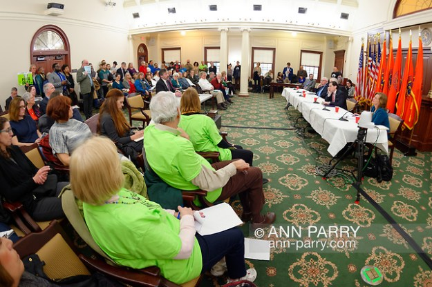 Mineola, New York, USA. 15th Feb, 2019. Invited speaker addresses (L-R, at table) NYS Senator JOHN BROOKS, Assemblyman STEVE ENGLEBRIGHT, NYS Sen. TODD KAMINSKY, and Assemblywoman JUDY GRIFFIN, during NYS Senate Public Hearing on Climate, Community & Protection Act, Bill S7253, sponsored by Sen. Kaminsky, Chair of Senate Standing Committee on Environmental Conservation. This 3rd public hearing on bill to fight climate change was on Long Island. (Ann Parry/Ann Parry, ann-parry.com)