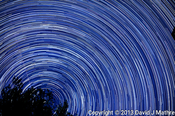 Star trails looking north from my backyard. Autumn night sky in New Jersey. Composite of 250 images taken with a Nikon D3x camera and 58 mm f/1.4 lens (ISO 100, 58 mm, f/2, 30 sec). (David J Mathre)