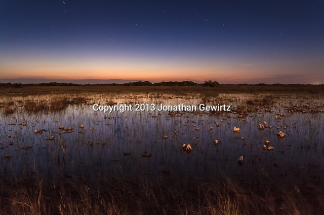 Long-exposure nocturnal view of flooded sawgrass prairie under a starry sky in the Shark Valley section of Everglades National Park, Florida. (Jonathan Gewirtz / jonathan@gewirtz.net / www.jonathangewirtz.com)