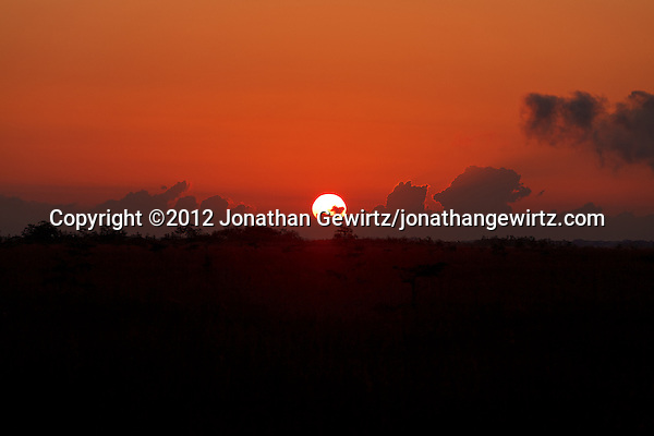 Looking East over sawgrass wetland from Pa-hay-okee Overlook in Everglades National Park, Florida as the sun rises behind low clouds. (© 2012 Jonathan Gewirtz / jonathan@gewirtz.net)