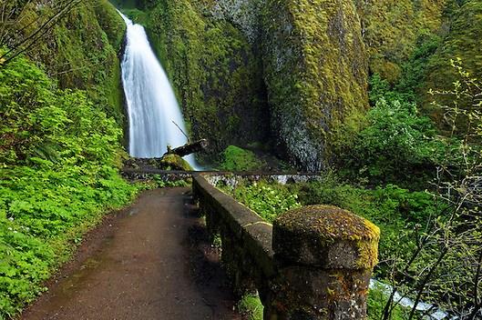 Wahkeena Falls and footbridge, Columbia River Gorge National Scenic Area, Oregon, USA (Brad Mitchell)