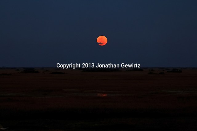 The full moon rises over flooded sawgrass prairie in the Shark Valley Section of Everglades National Park, Florida. (Jonathan Gewirtz / jonathan@gewirtz.net / www.jonathangewirtz.com)