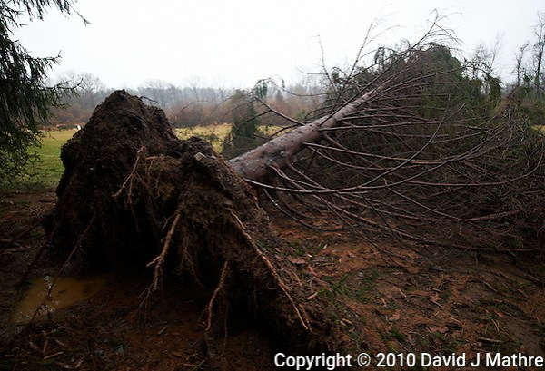 Storm Aftermath (David J Mathre)