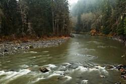South Fork Stillaguamish River, Mountain Loop Highway, Snohomish County, Washington Cascade Mountains
