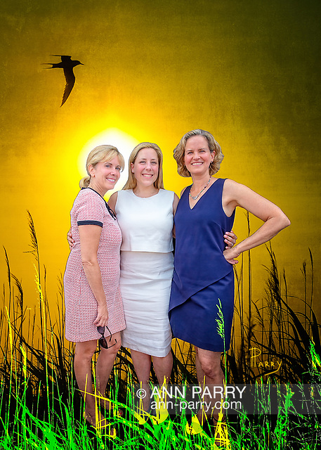 """[Photo Composite Illustration] Massapequa, NY, USA. August 5, 2017. L-R, Democrats LAURA GILLEN, Hempstead Town Supervisor; LIUBA GRECHEN SHIRLEY, Congressional candidate for NY 2nd District; and LAURA CURRAN, Nassau County Executive, pose at opening of campaign office. (Setting: Merrick, New York, USA. June 20, 2013. Tern flies over marsh reeds at Levy Park and Preserve, the highest point of South Shore of Nassau County, Long Island.)"
