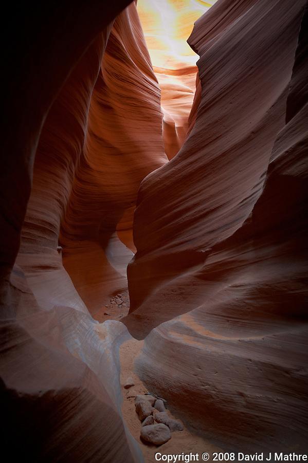 Lower Antelope Canyon, Page Arizona. Image taken with a Nikon D3 and 24 mm f/3.5 PC-E lens (ISO 200, 24 mm, f/5.6, 1/4 sec). (David J Mathre)