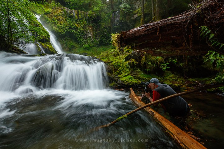 Gifford Pinchot National Forest, Washington (Alejandro Velarde)