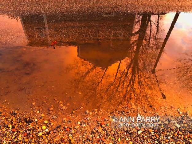 Merrick, New York, USA. January 24, 2019. After flash flood, reflection of colorful winter sunset fills large puddle in road, on south shore of Long Island. (© 2019 Ann Parry/Ann-Parry.com)