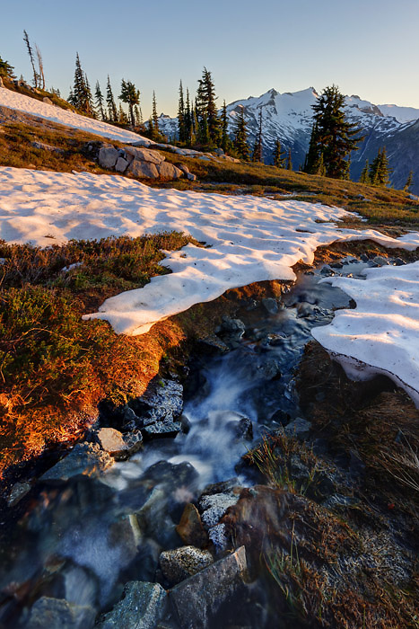 Small stream running through snowfields in subalpine meadow, Mount Daniel in background, Wenatchee Mountains, central Washington Cascade Mountains (Brad Mitchell)