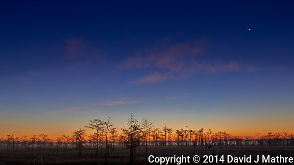Big Cypress Swamp at Dawn. Image taken with a Nikon D800 camera and 14-24 mm f/2.8 lens (ISO 100, 24 mm, f/8, 25 sec). Raw image processed with Capture One Pro 7. (David J Mathre)
