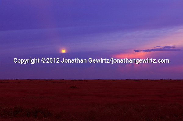 The full Moon rises above clouds over sawgrass prairie in the Shark Valley section of Everglades National Park, Florida. (© 2012 Jonathan Gewirtz / jonathan@gewirtz.net, © 2012 Jonathan Gewirtz / jonathan@gewirtz.net)