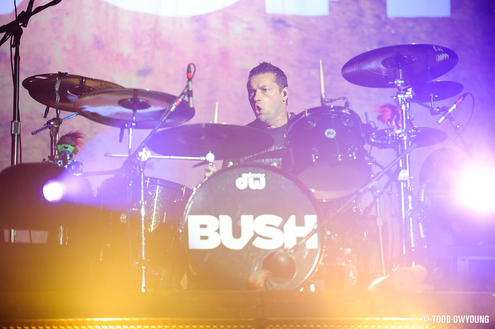 Bush performing at Pointfest at Verizon Wireless Amphitheater in St. Louis on August 20, 2011. © Todd Owyoung. (Todd Owyoung)