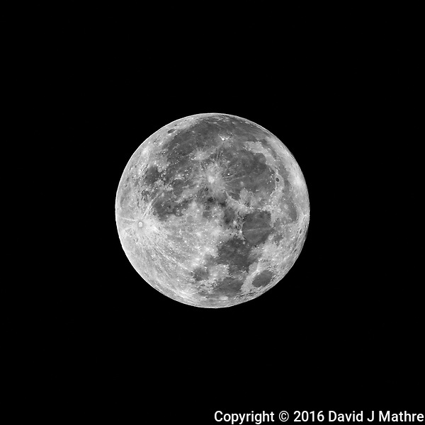 Full Moon. Autumn Nature in New Jersey. Image taken with a Nikon D810A camera and 80-400 mm VR II lens (ISO 200, 400 mm, f/16, 1/125 sec). (David J Mathre)