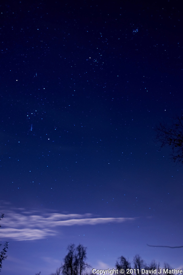 New Jersey Autumn Night Sky. Image acquired with a Nikon D3x and 24 mm f/3.5 PC-E lens (ISO 400, f/4, 30 sec) (David J Mathre)