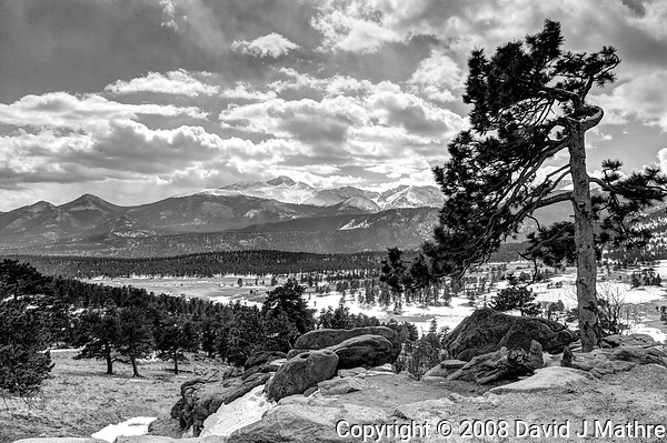 Pine tree in the winter. Rocky Mountain National Park. Composite of seven images taken with a Nikon D3 camera and 24-70 mm f/2.8 lens (ISO 200, 27 mm, f/16, various). Raw images processed with Capture One Pro, and HDR composite generated using Photomatix Pro. (David J Mathre)