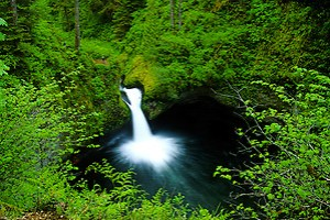 Punchbowl Falls along Eagle Creek, Columbia River Gorge National Scenic Area, Oregon, US (Roddy Scheer)