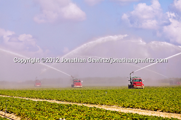 Truck-mounted water pumps irrigate vegetable fields near Homestead, Florida. (© 2012 Jonathan Gewirtz / jonathan@gewirtz.net)
