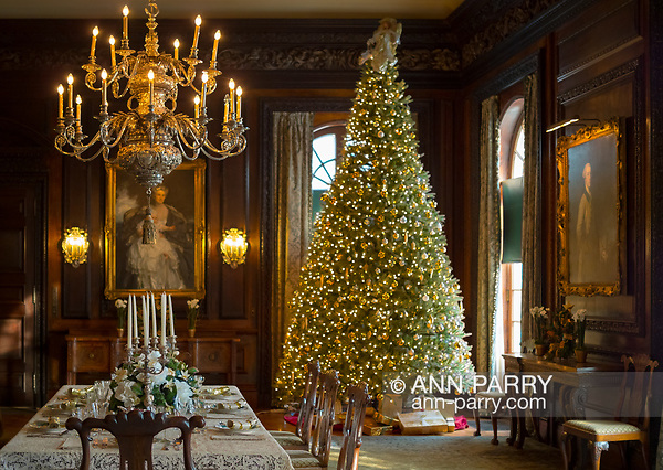 Old Westbury, New York, USA. December 17, 2017. A lighted Christmas tree decorates the formal dining room of Westbury House at Old Westbury Gardens during its Winter Holiday event. (Ann Parry/˙ 2017 Ann-Parry.com)