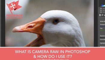 How To Open Images In Camera Raw In Photoshop - Photoshop