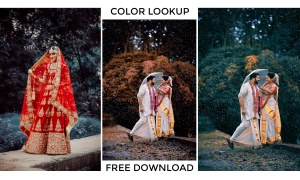 Best 3D LUTs (Color Lookup Table) Fee Download for Adobe Photoshop