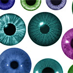 Iris cepillos