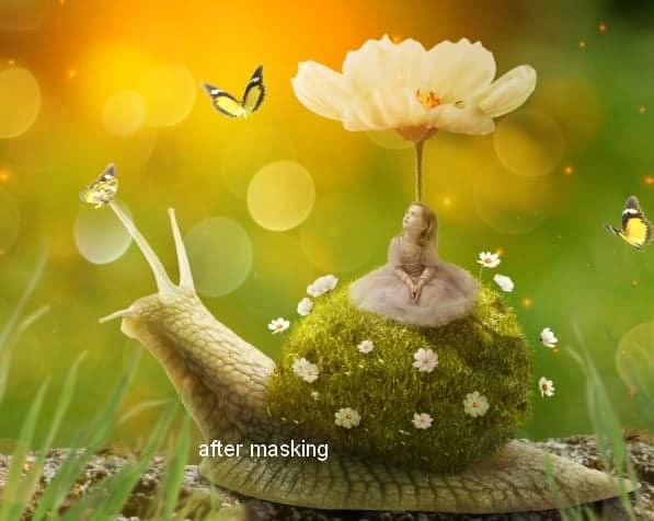 snail37a