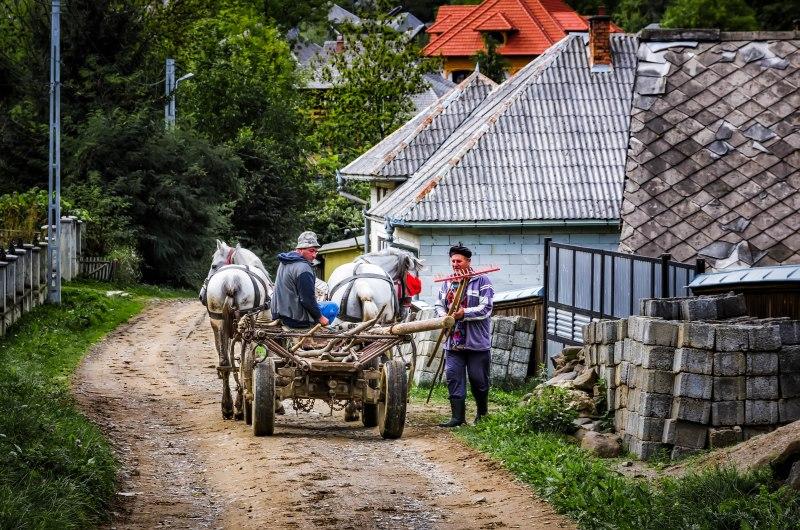 Loading the cart, Maramures, Romania