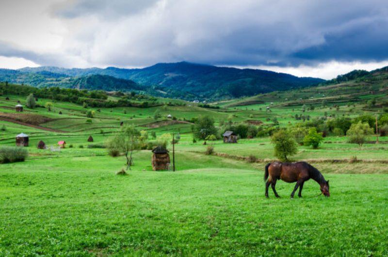 Maramures carri cavalli ed internet - Maramures landscape