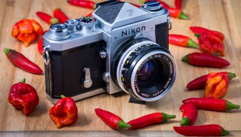 Nikon F2 – Ultimate Legend - Photo Thinking - Camera Review