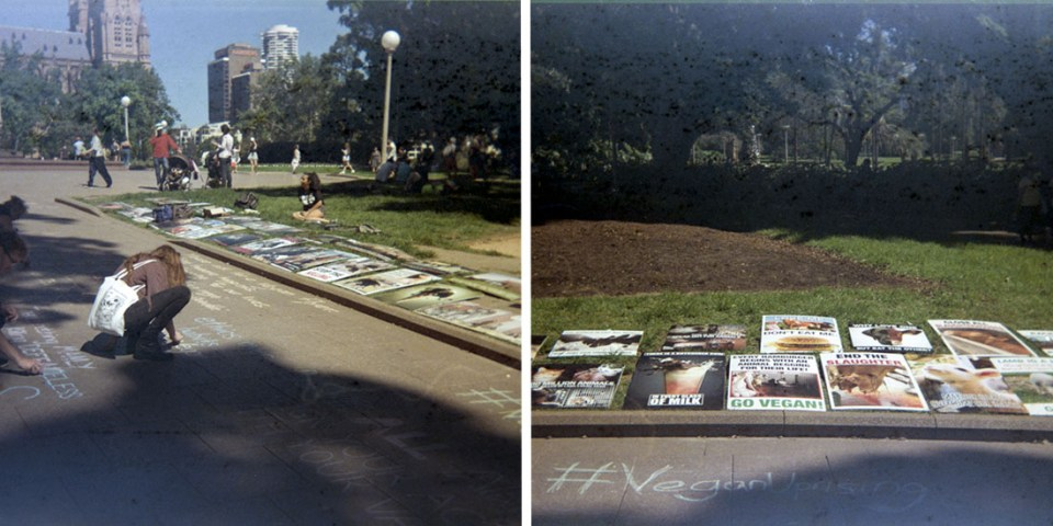 Vegan protest against animal farming, Kodak Instamatic 133, Fujicolor Super HGII 100 (expired 1995)