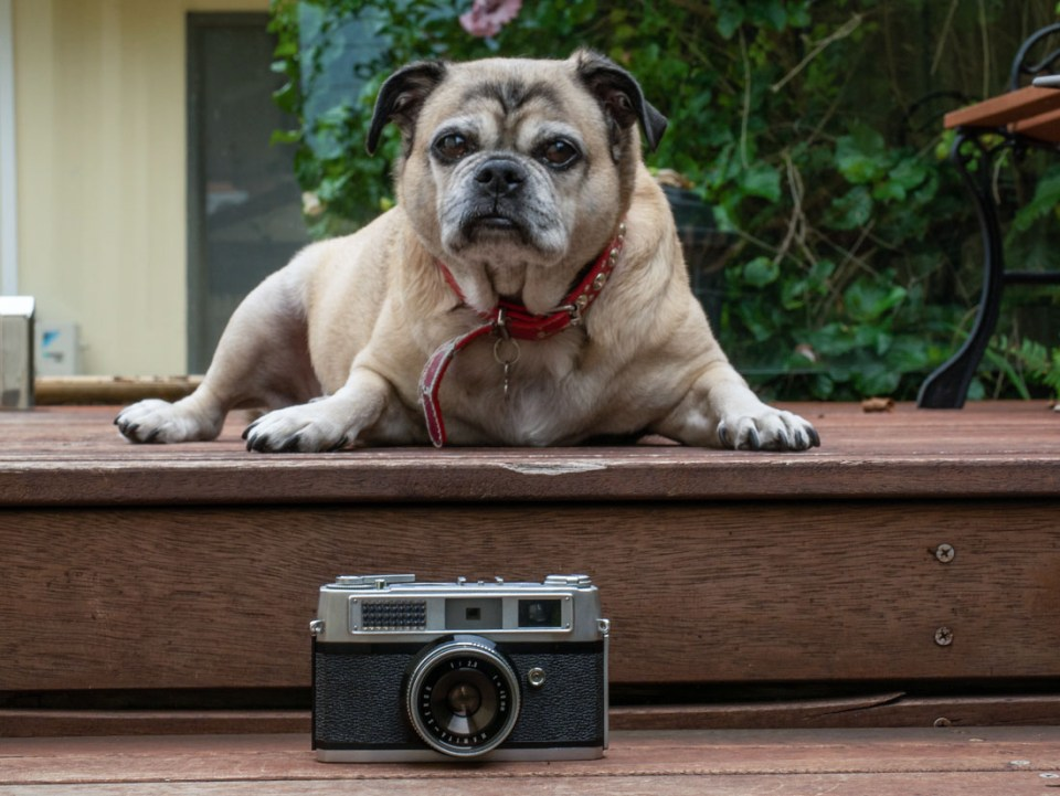 Oscar with the Rank Mamiya