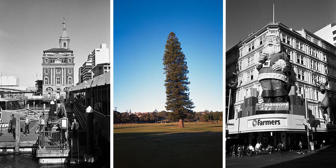 L-R: Ferry Terminal, Tree, Big Santa | Nikon RD2 | Ilford FP4 Plus & Kodak Ultramax 400
