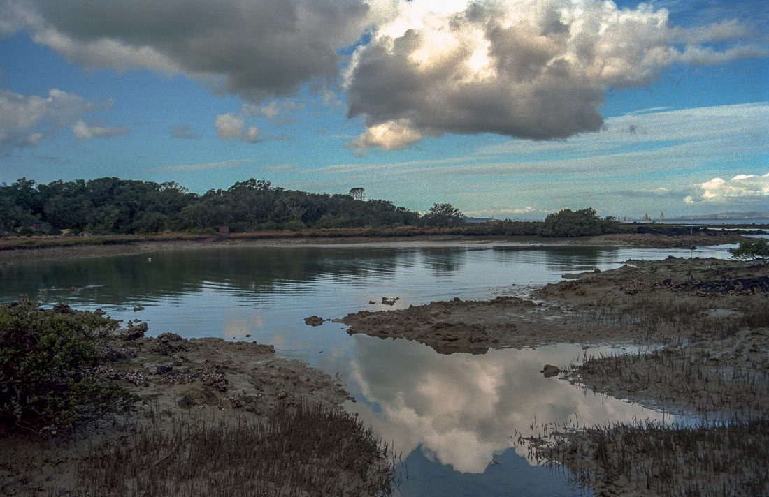 Rangitoto Island (by my son Alec) | Nikon F-601 | Tamron 28-200mm 1:3.8-5.6 F Asp. | Kodak Ultramax 400