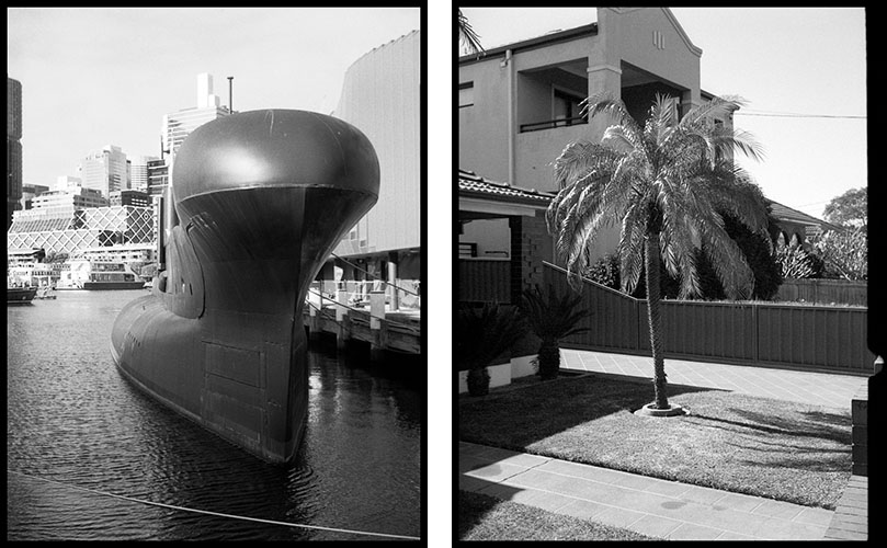Submarine (l), Tree (r) | Agfa Optima-Parat | Ilford FP4 Plus
