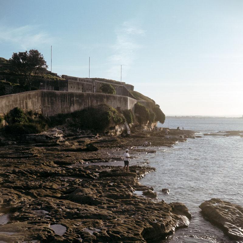 Bare Island | Bolseyflex | Kodak Portra VC 160 (expired)