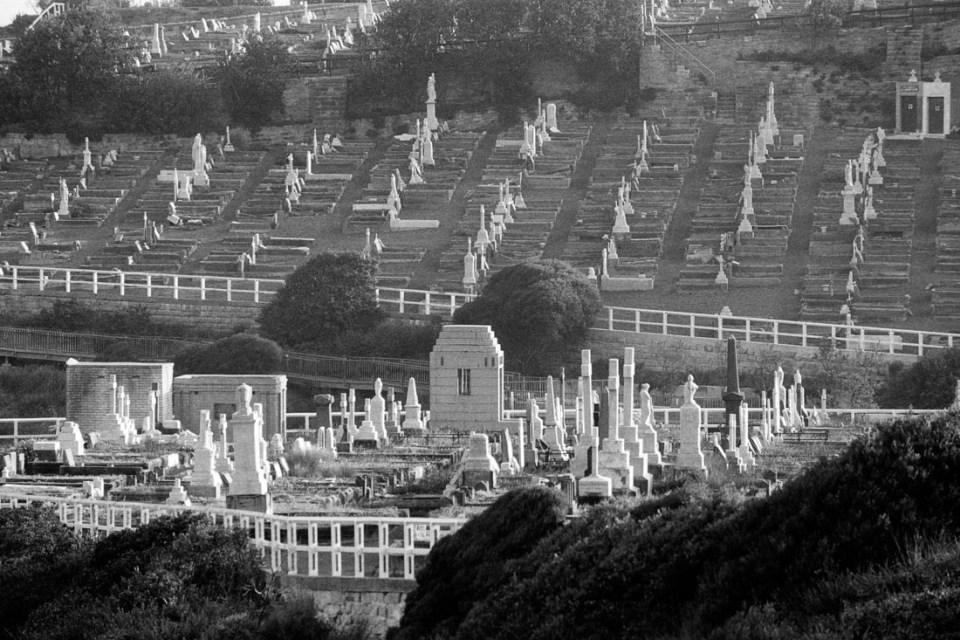 Bronte Cemetery | Nikon F100 | Nikkor 80-200mm 1:2.8 D ED AF-S | Kodak T-Max 100