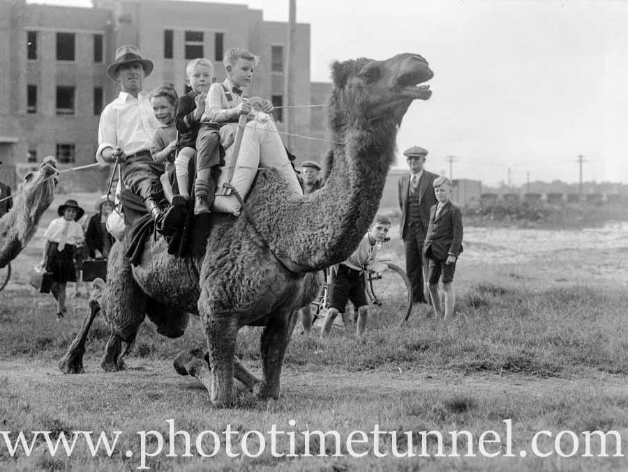 Dick Jones, the travelling camel man