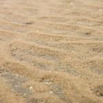 干潮後の海辺のビーチ