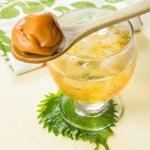 【用木匙羹潷起日式梅酒裡面的酸梅】所見即所得餐飲業界向產品