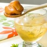 【用木匙羹潷起日式梅酒裡面的酸梅】專業食物攝影師拍攝的圖片庫