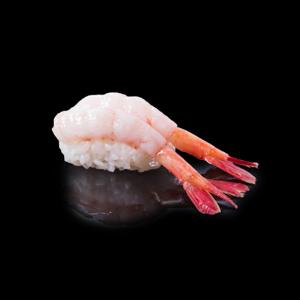 甘エビ寿司の切抜き画像・食べ物写真素材・商用ダウンロード可